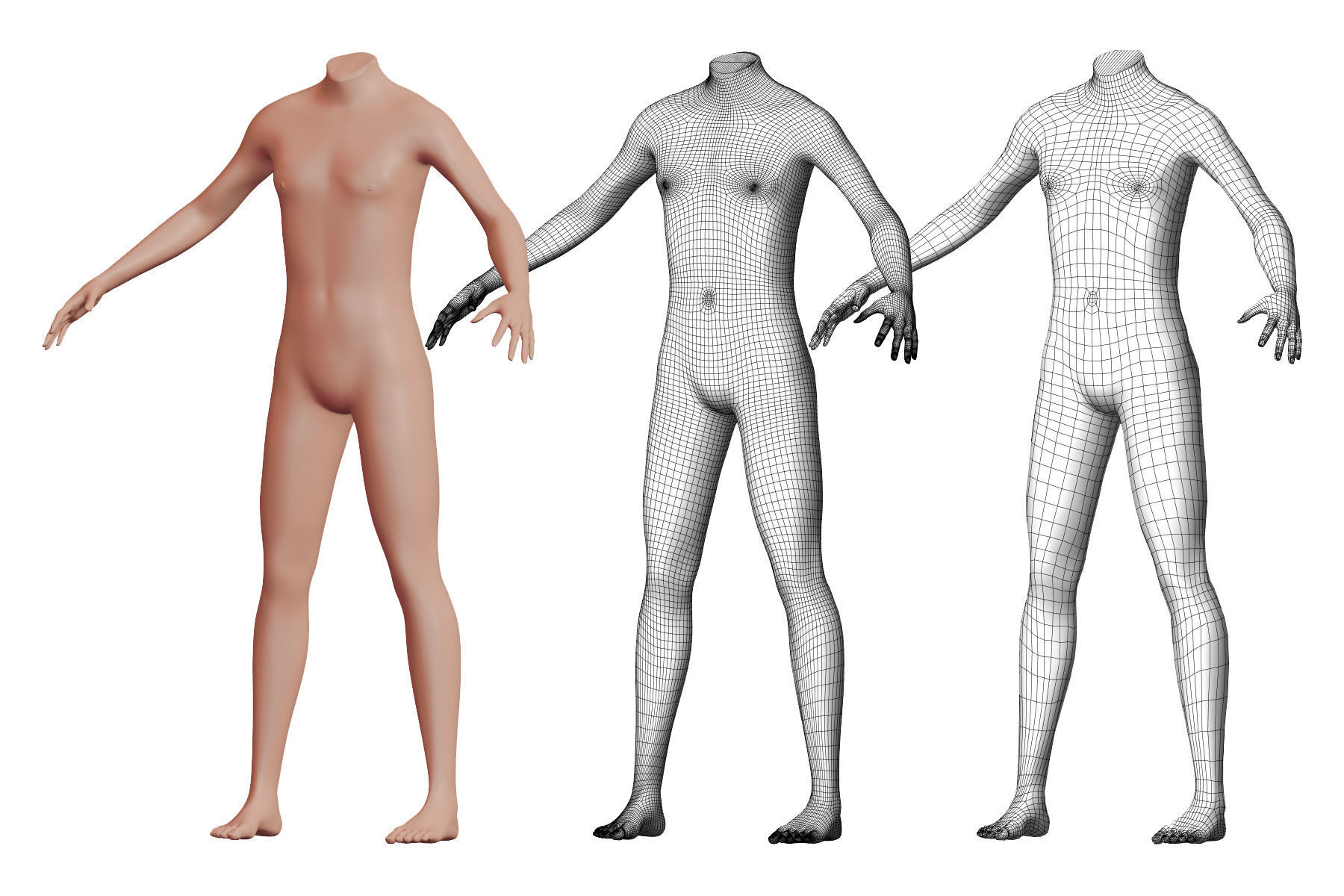 Character 24 High and Low-poly -  Body male
