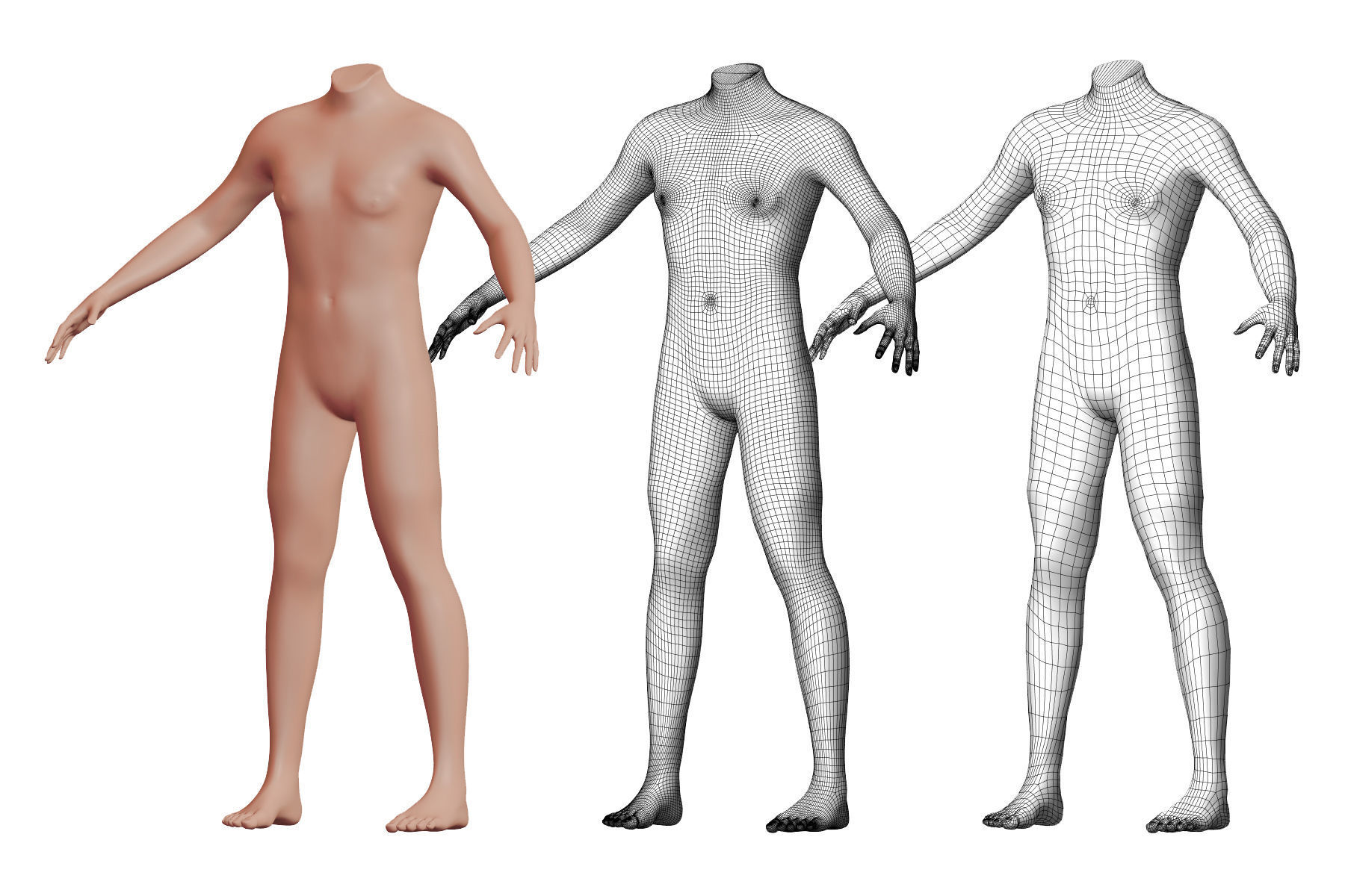 Character 33 High and Low-poly -  Body male