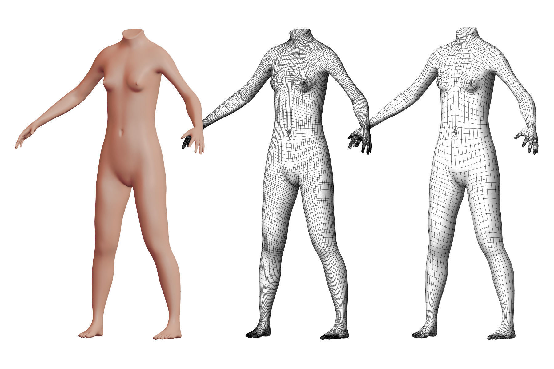 Character 40 High and Low-poly -  Body female