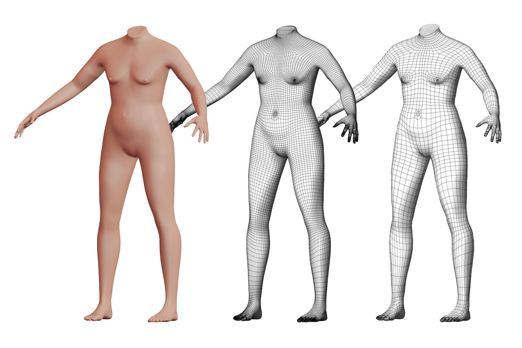 Character 41 High and Low-poly -  Body male