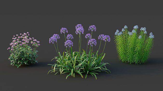 XfrogPlants Garden Flowers Pack 1