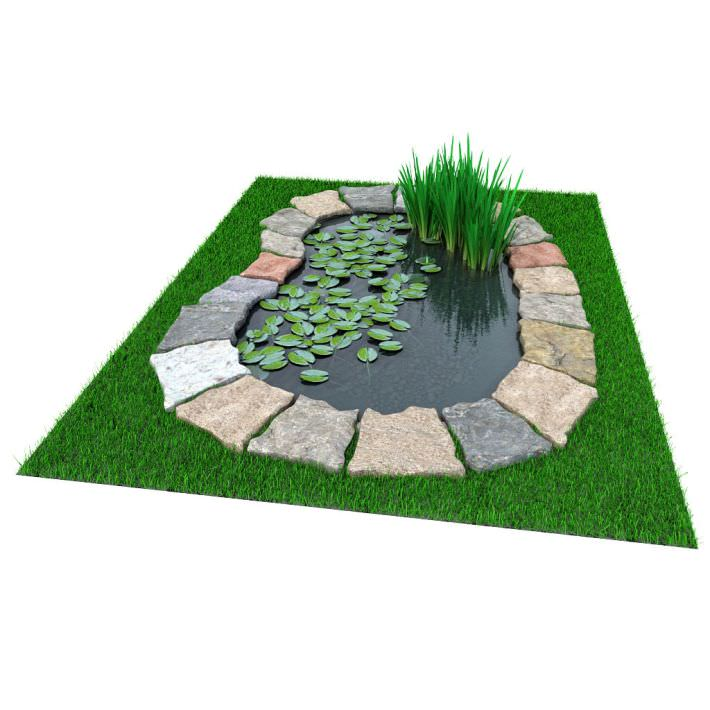 Garden pond with foliage 3d model for Gardening tools 3d model