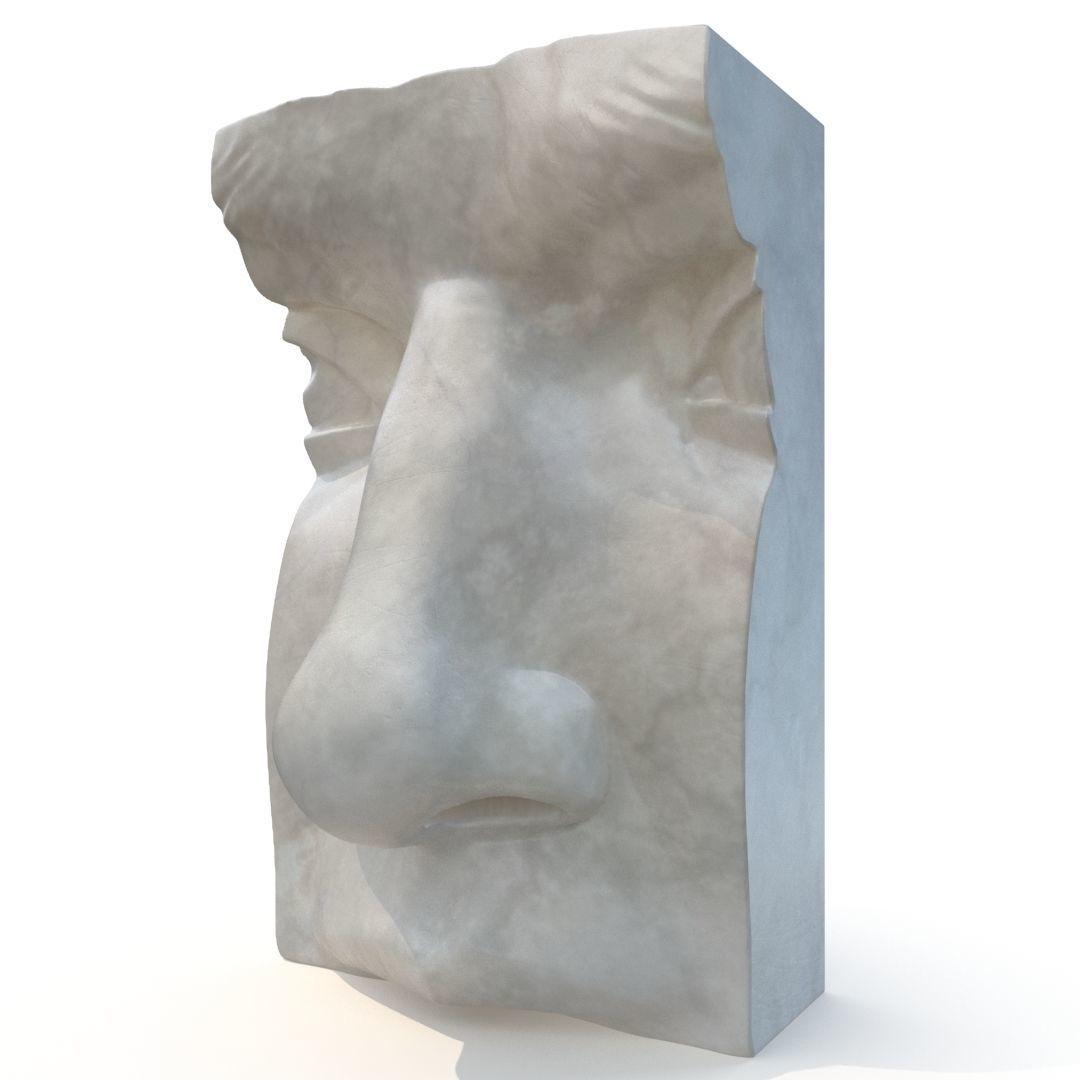 Nose of David - CGI model
