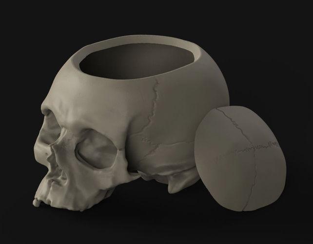 skull box 3d model stl 1