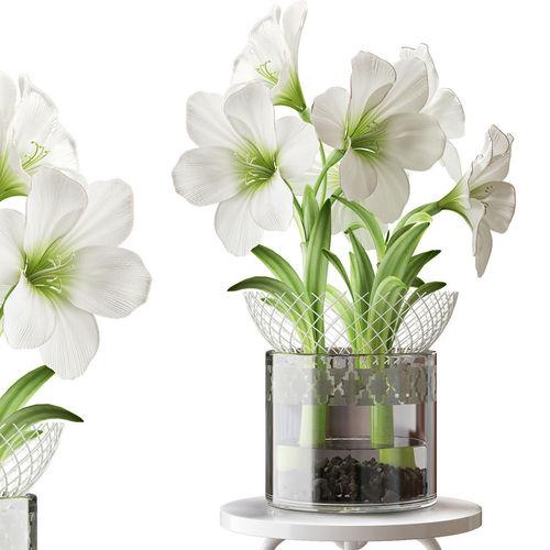 flower 2 3d model max fbx 1