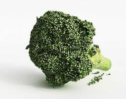 fresh green broccoli 3d model