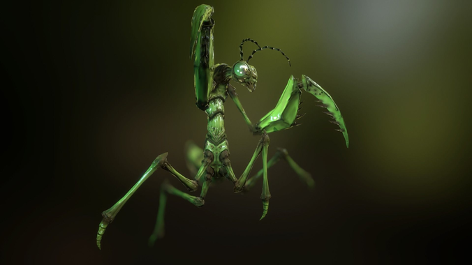 praying mantis 3d model low-poly rigged animated obj mtl fbx blend tga unitypackage prefab 1