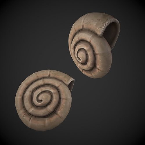 Ammonite Sea Shell