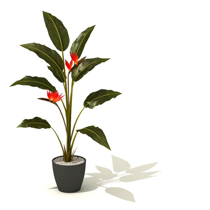 Potted Green Tall Plant With Red Flowers Model 1