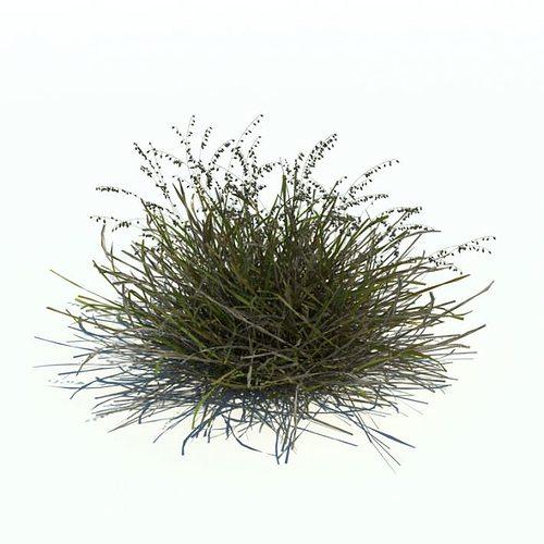 green bush 3d model obj mtl 1