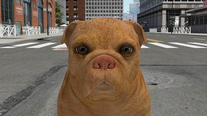 FBEX-018 Dog