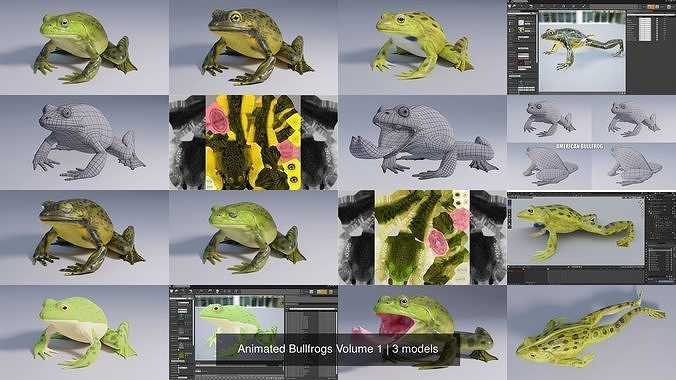 Animated Bullfrogs Volume 1