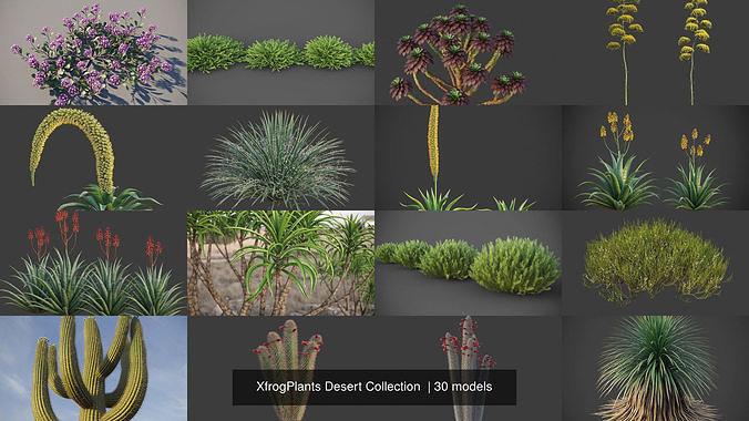 XfrogPlants Desert Collection