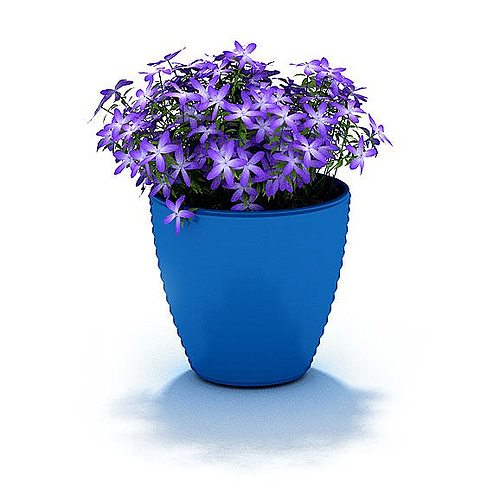sc 1 st  CGTrader & Beautiful Potted Flowers 3D model | CGTrader
