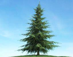 3D model Pine Christmas Tree