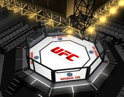 UFC Style Octagon Fighting Arena 3D
