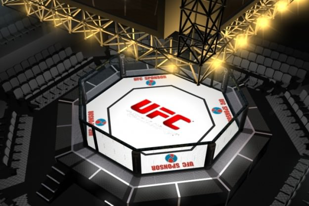 ufc_style_octagon_fighting_arena_3d_model_a38db458-a271-437a-ae3c-bde140f702b1 Octagon Kitchen Table