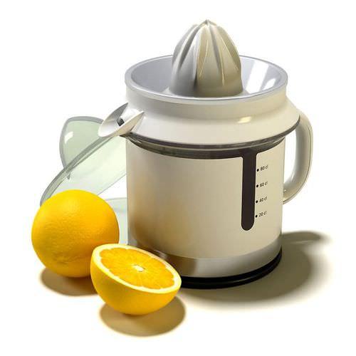 Juicer With Lemons3D model
