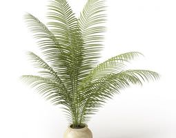 white clay potted fern 3d model obj