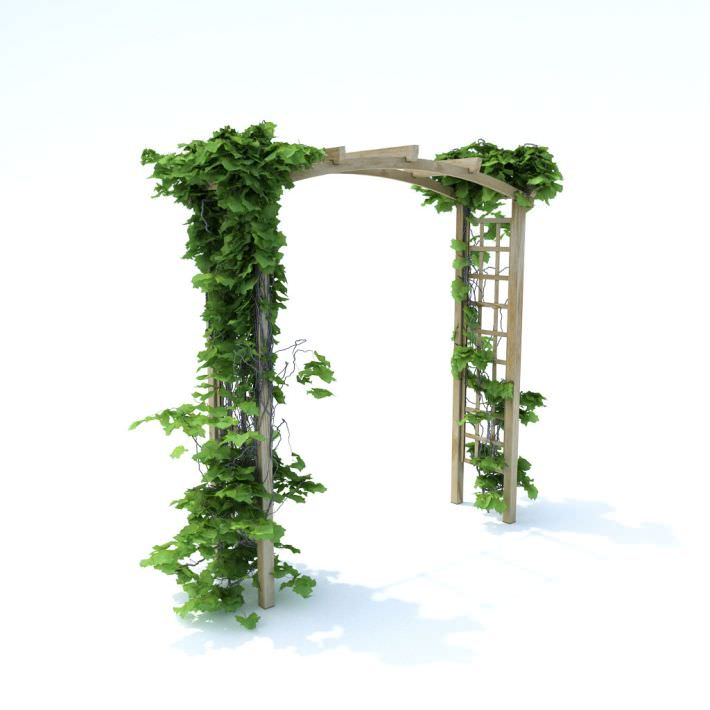 Pergola with all the greenery 3d model obj for Gardening tools 3d model