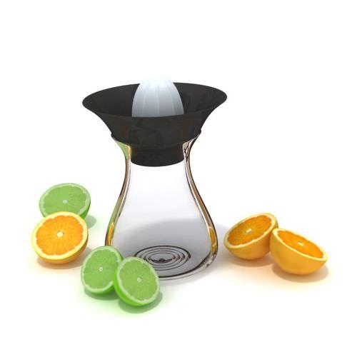 Fruit Juicer3D model