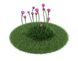 Small Puple Flowers 3D