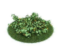 Natural Green Grass Plant 3D model