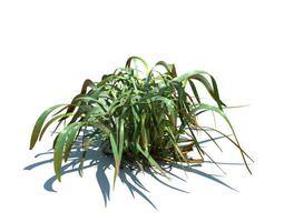 Frost Grass 3D