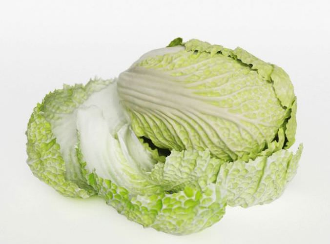 Pok Choi Cabbage3D model