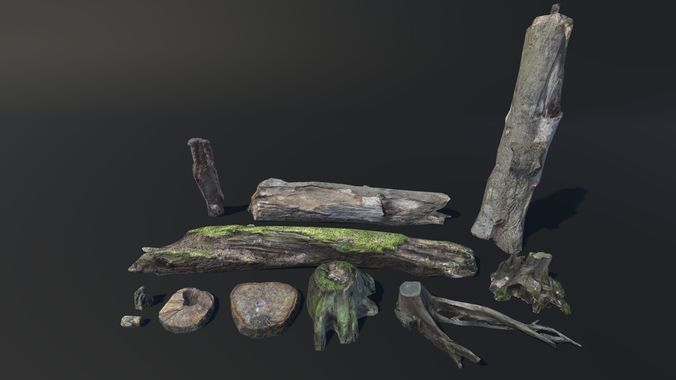 stumps and trunks vol 1 3d model low-poly fbx 1