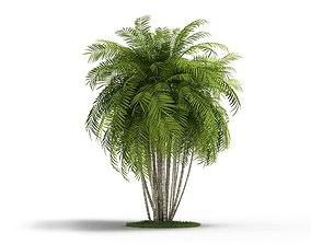 3D model leaf Green Leaved Plant