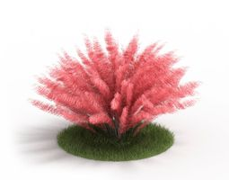 3d small pink shrub
