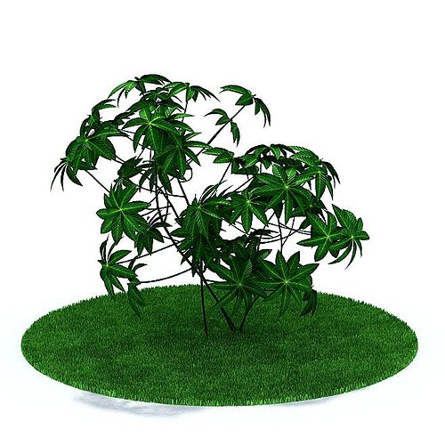 green leafy plant 3d model 3ds 1