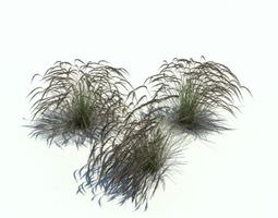 3D model Bushy Grasses