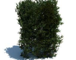 3D Tall Green Hedge