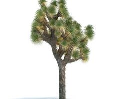 green exotic tree 3d