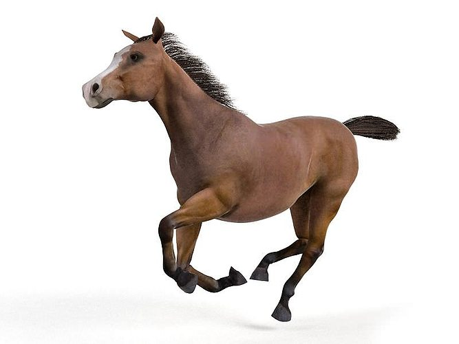 brown galloping horse 3d model obj mtl 1