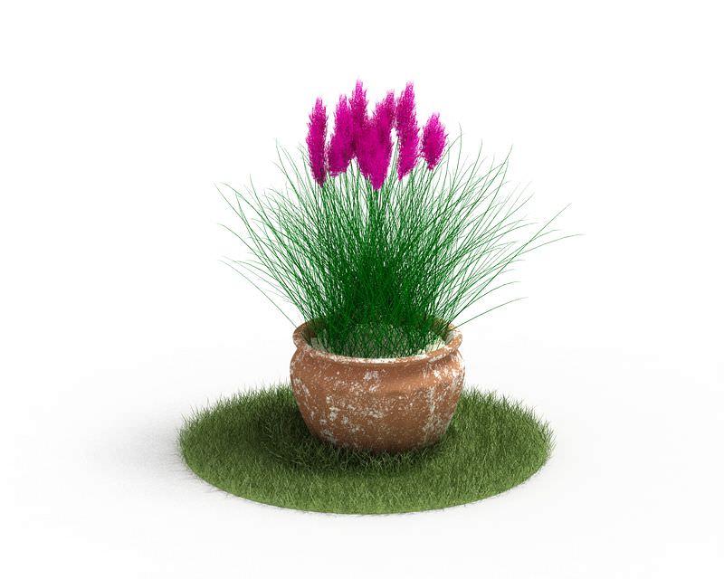 Potted Pink Flower Plant 3D Model - CGTrader.com