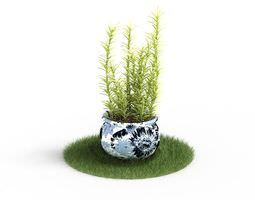 green fern potted plant 3d model obj