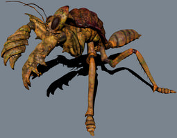 3D asset The mole mantis