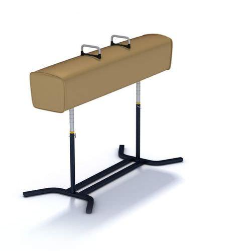 Gymnastics Buck Horse3D model