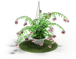 Green Fern With Pink And White Flowers Plant 3D Model