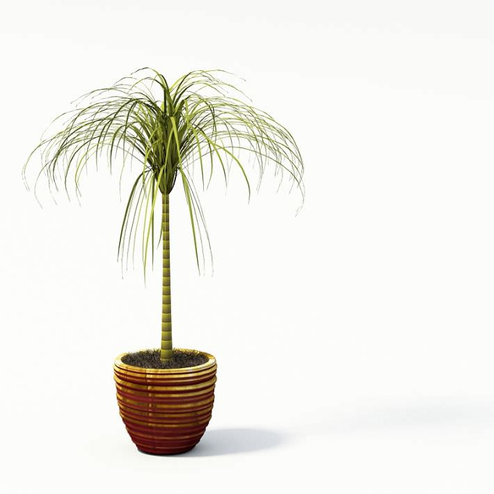 Mini Palm Tree In Brown Flower Pot Model 1