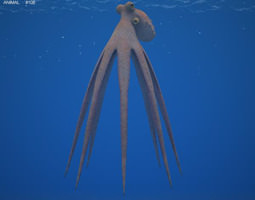 Common Octopus Octopus Vulgaris 3D Model