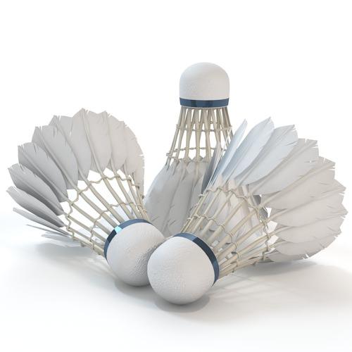 Badminton Shuttlecock 3d Models Cgtrader Com