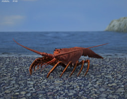 Spiny Lobster Palinuridae 3D Model