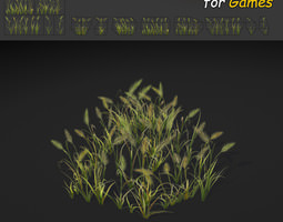 3D asset Feather Reed Grass