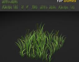 3D asset Grass Texture