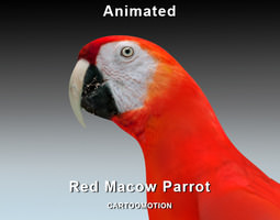 red macaw parrot 3d model rigged animated max