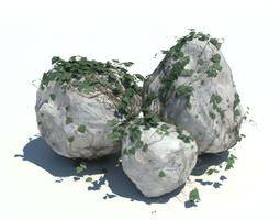 Large Boulders Covered In Vines 3D model